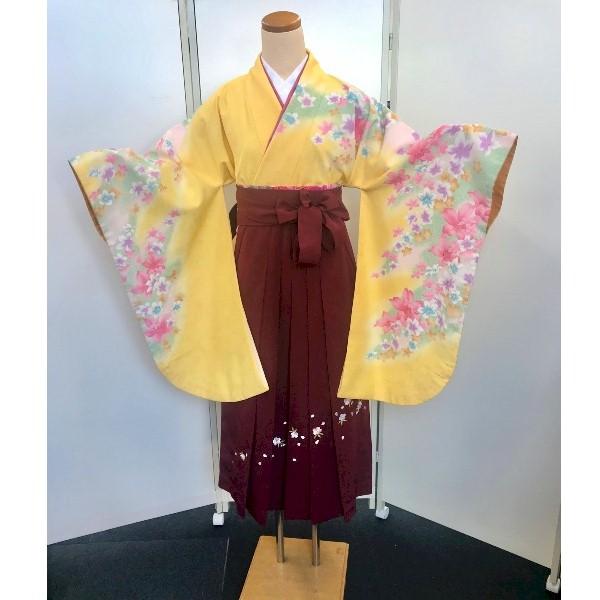 新品新入荷|矢絣・矢羽根二尺袖と刺繍袴|No.100-170